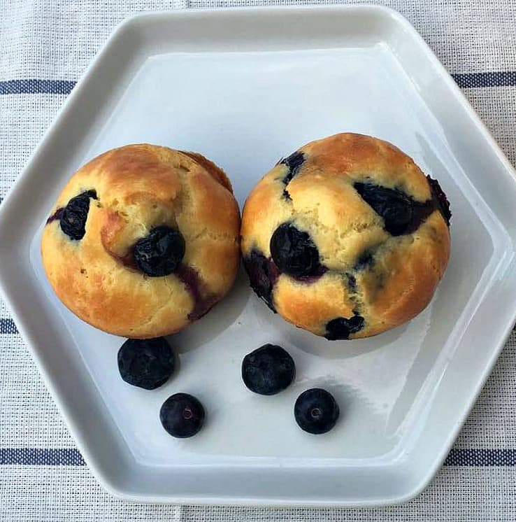 Dairy Free Lemon Blueberry Protein Muffins