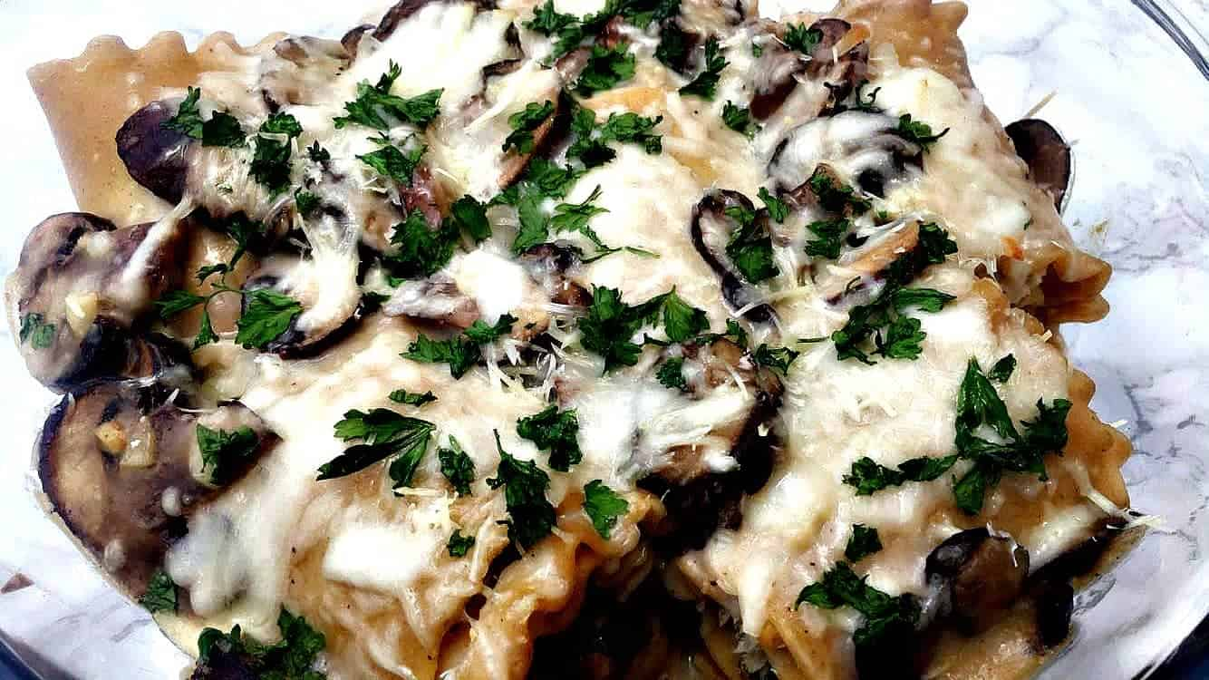 baked whole wheat chicken alfredo lasagna roll-ups