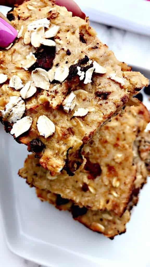 oatmeal chocolate cranberry protein bar