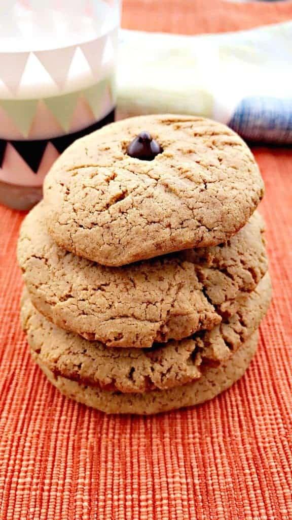 peanut butter dark chocolate chip protein cookies