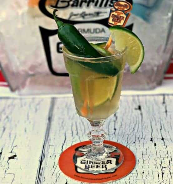 Ginger Beer Tequila Mexican Mule Cocktail