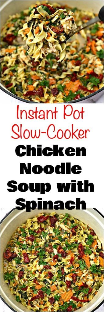 instant pot slow cooker chicken noodle soup with spinach