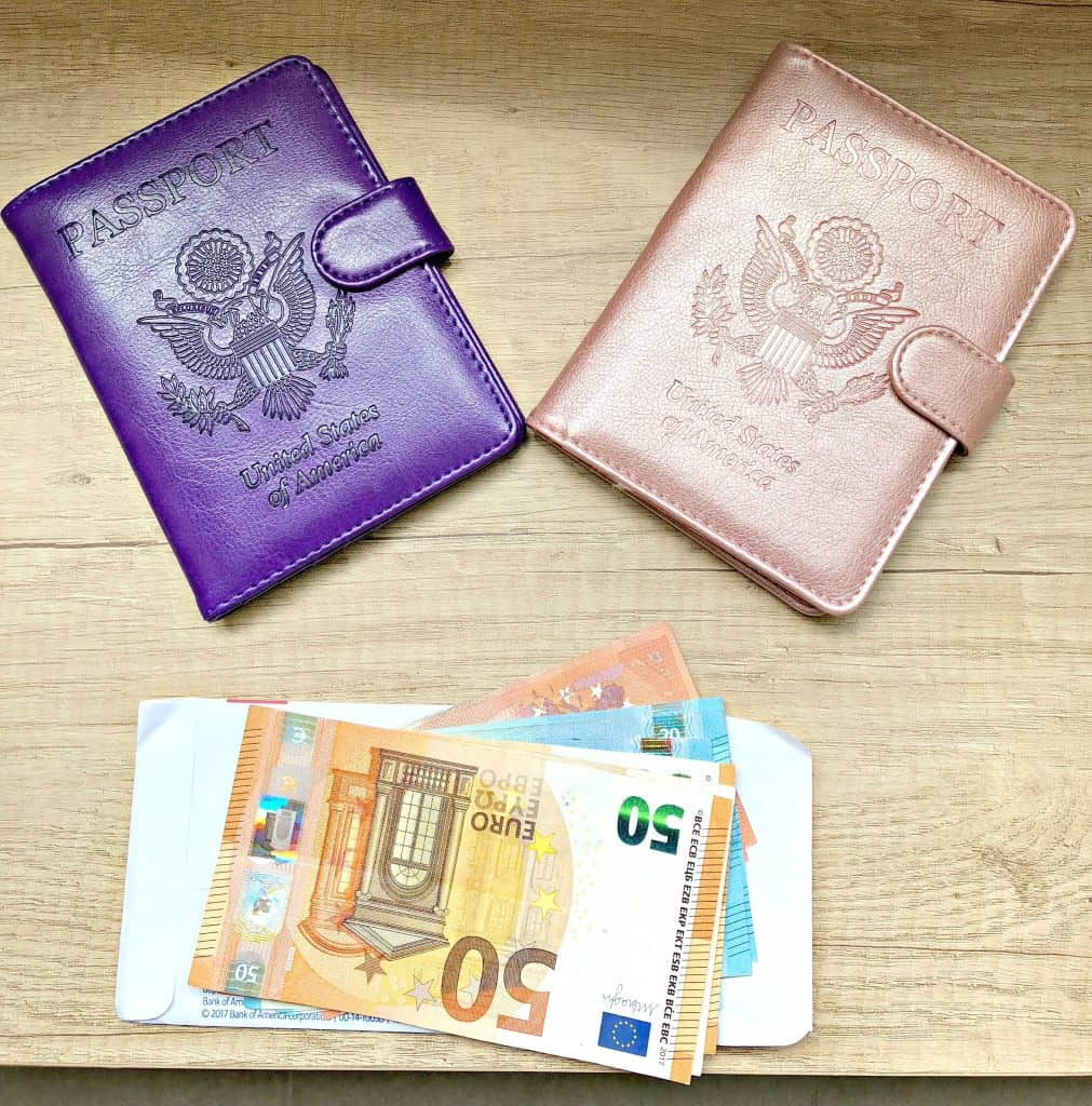 passport book with euros