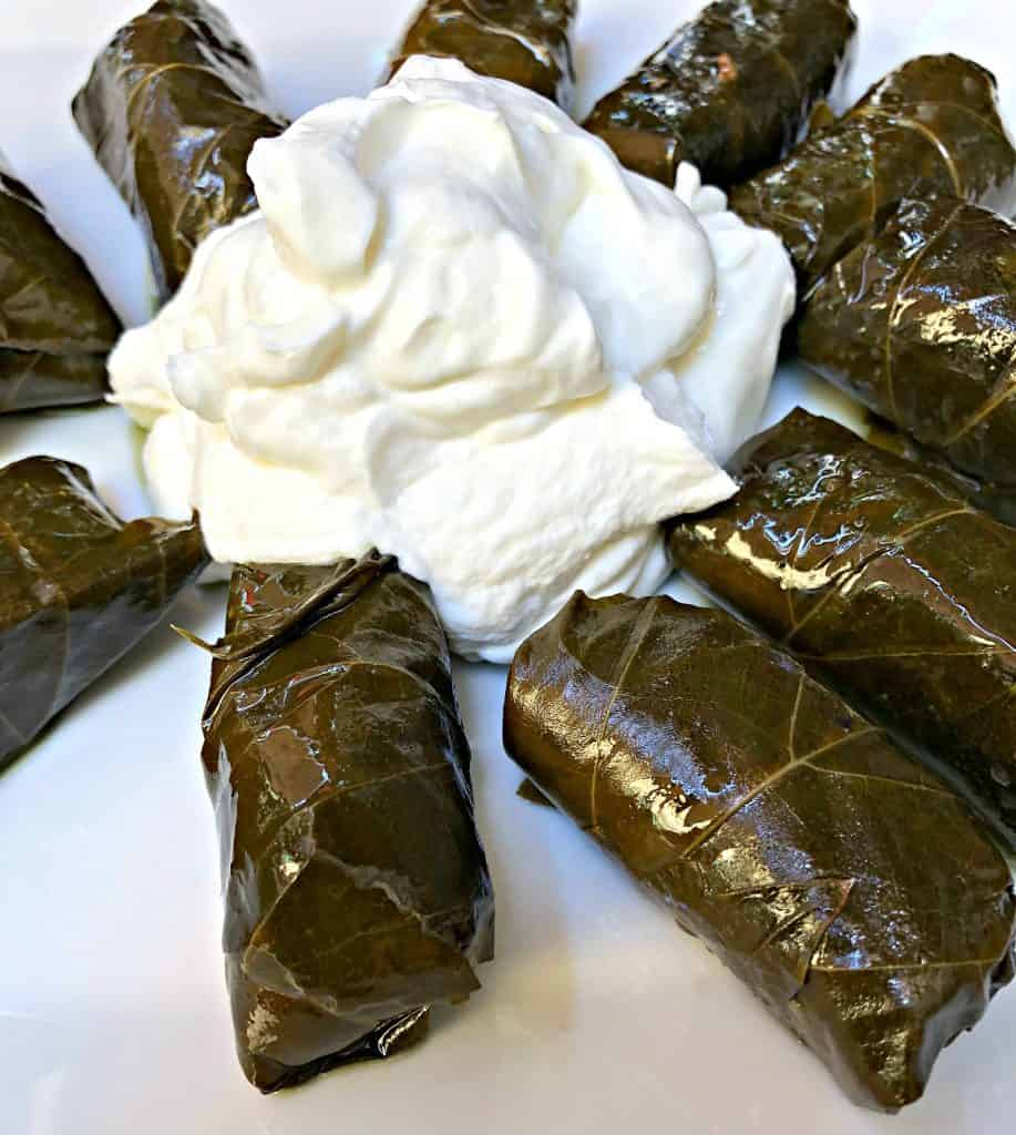 rice stuffed with grape leaves