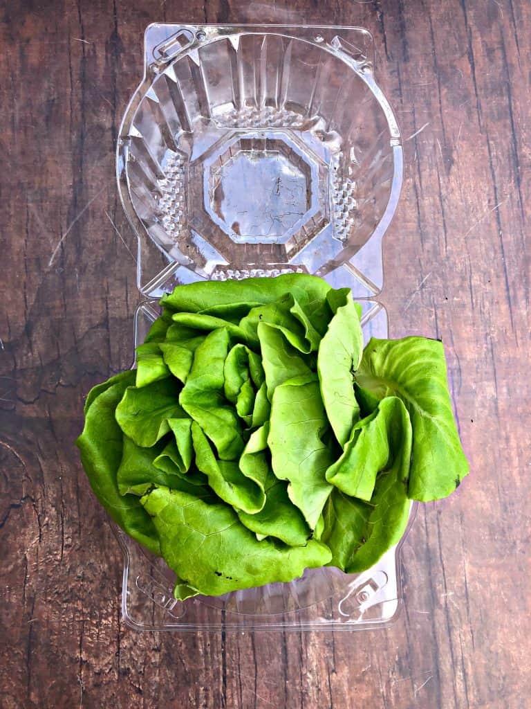 bibb butter lettuce